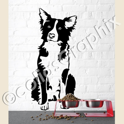 Border Collie Folienaufkleber 12